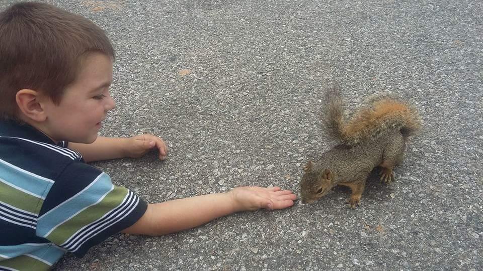 chasing squirrels